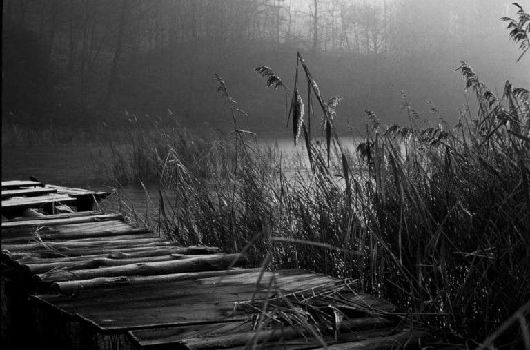 photo photo paysage en noir et blanc