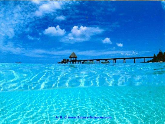 photo image paysage tahiti