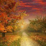 de paysage d'automne