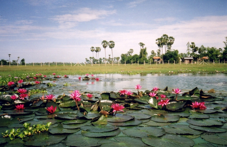 photo image paysage cambodge
