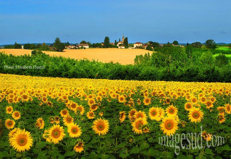 photo image paysage france