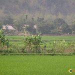 Image paysage vietnam