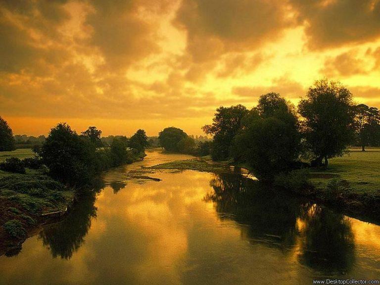 photo paysage jaune