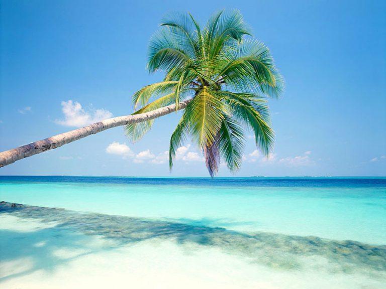 photo photo paysage ile paradisiaque