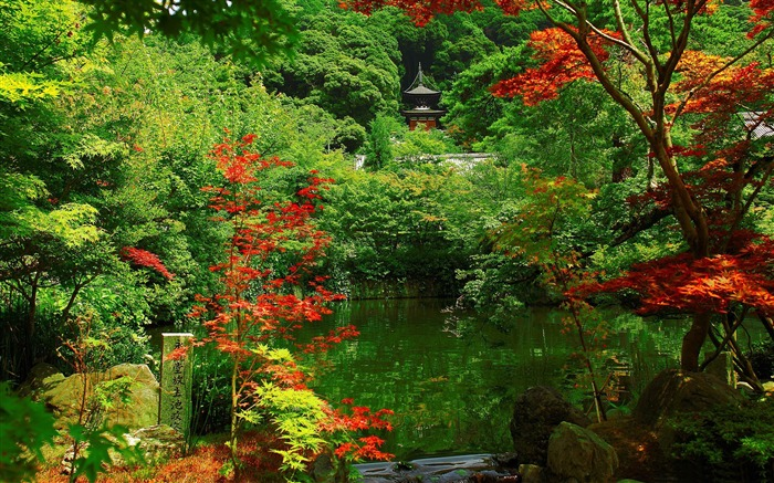 photo paysage kyoto