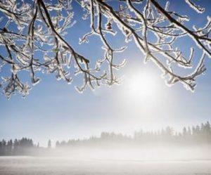 Image paysage en hiver