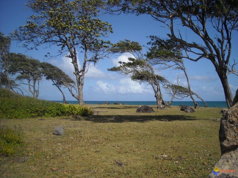 photo image paysage guadeloupe