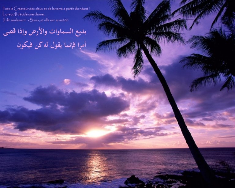 photo image paysage islam