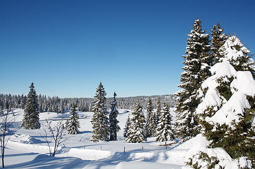 photo image paysage janvier