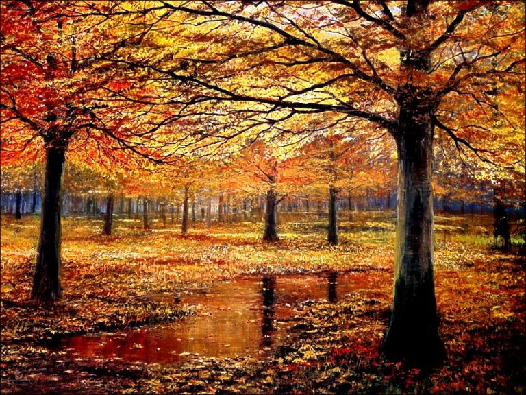 photo image paysage septembre