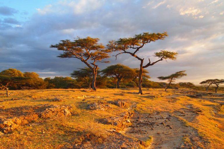 photo paysage afrique