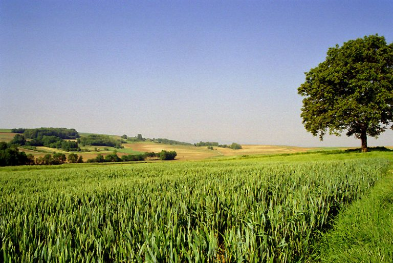 photo paysage agricole