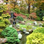 paysage jardin japonais