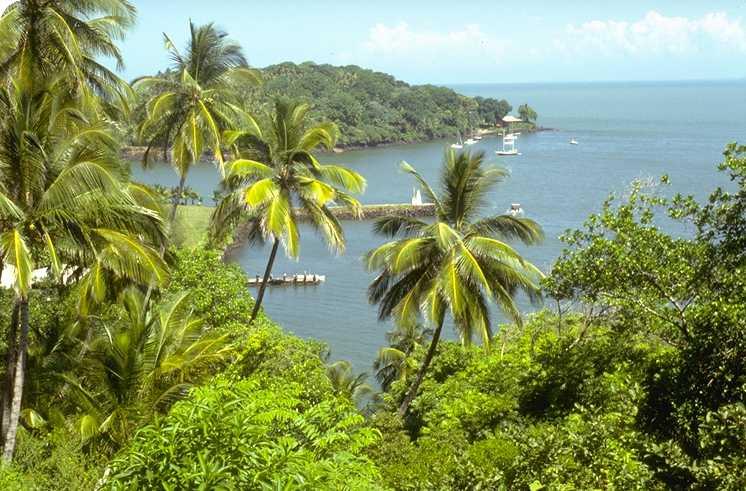 photo photo paysage guyane
