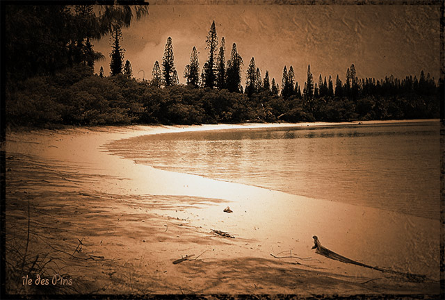 photo photo paysage sepia