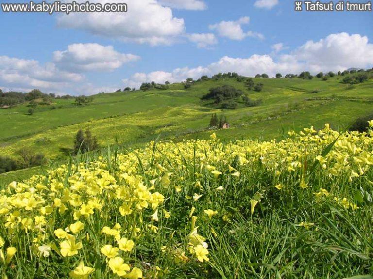 photo photos paysage kabylie